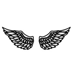 Wings isolated on white background design element vector