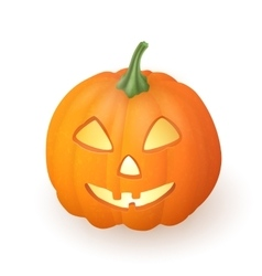 Cartoon Jack O Lantern halloween pumpkin vector image