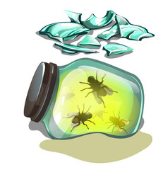 glass jar with flies lying in the sand fragments vector image