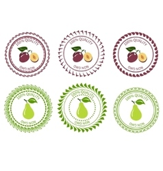 Logo plum and pear vector image