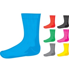 Sock collections vector