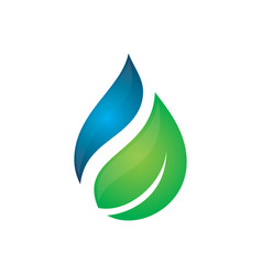abstract leaf waterdrop logo vector image vector image