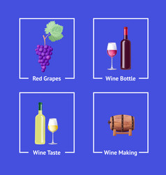 red and white wine making vector image vector image