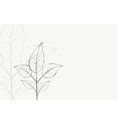 background with branch with leaves vector image