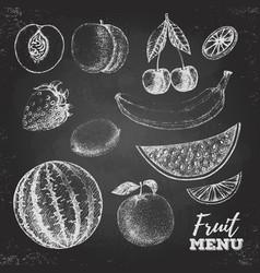 Vintage chalk drawing set of fresh fruits sketch vector image