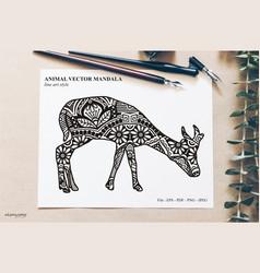 Animal mandala vector