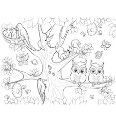 animals and birds living on the tree coloring for vector image