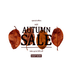 autumn sale text banner vector image