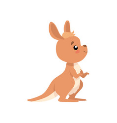 Cute baby kangaroo brown wallaby australian vector
