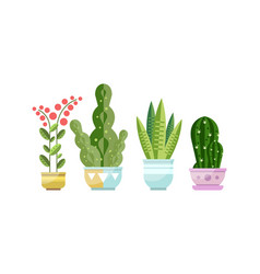 green growing potted houseplants set home or vector image
