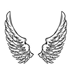 hand drawn wings isolated on white background vector image