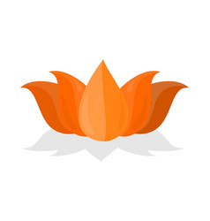 National symbol of india lotus flower isolated vector