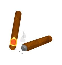whole and burning brown cigar with smoke smoking vector image