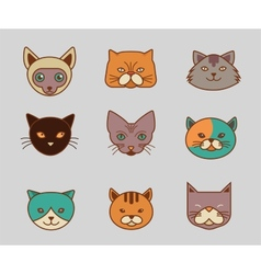 Collection of cat line and color icons vector image