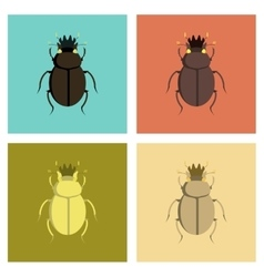 assembly flat bug scarab vector image