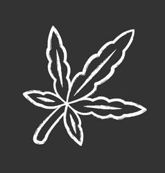 Cannabis leaf chalk icon weed product ganja vector