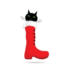 cat and new year boot color vector image