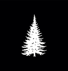 coniferous trees silhouettes vector image