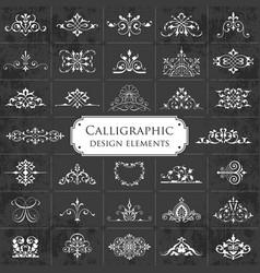 ornate calligraphic design elements on chalkboard vector image