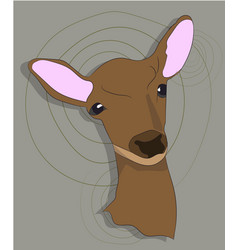 portrait of a deer on a colored background vector image