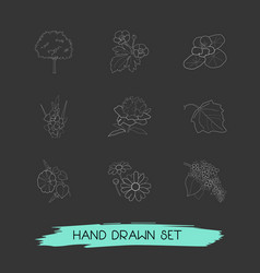 Set of botany icons line style symbols with lilac vector