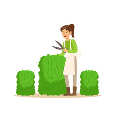 young woman gardener working with hedge shear vector image