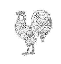 hand-drawn ornamental style rooster Great for vector image