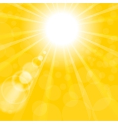 Abstract sun background yellow summer pattern vector