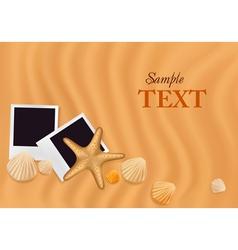 sea shells with photos vector image