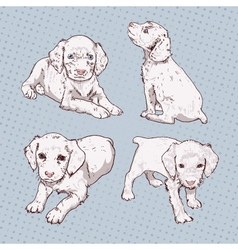 Set of little puppy hand-drawing vector image vector image