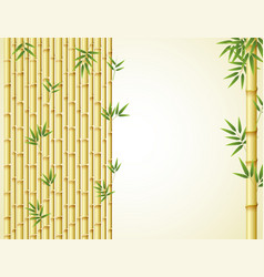 background design with golden bamboo and green vector image