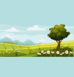 cute rural landscape tree field daisy flowers vector image