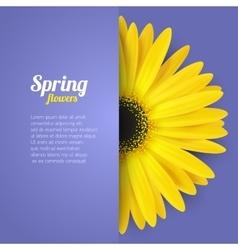 Spring flower in paper pocket vector