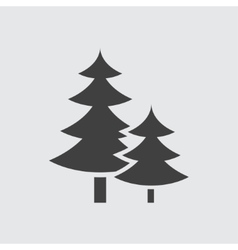 Spruce icon vector image