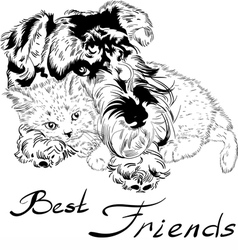 Sweet dog with cute kitten hand drawing vector image