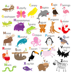 zoo animal alphabet cute cartoon character set vector image