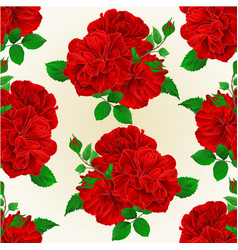 seamless texture bunch three red roses with buds vector image