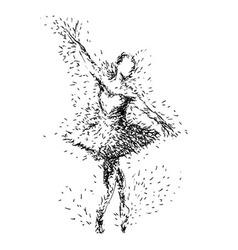 Hand drawing of ballerinas vector image vector image