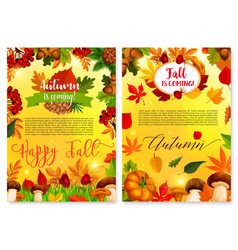 Autumn fall seasonal nature greeting card vector