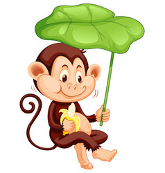 Cute monkey with green leaf on white background vector