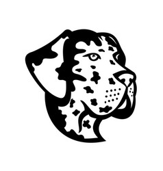 Head great dane deutsche dogge german mastiff vector
