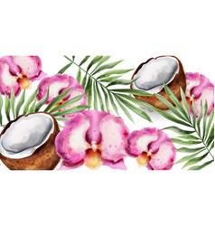 orchid flowers and coconut watercolor vector image