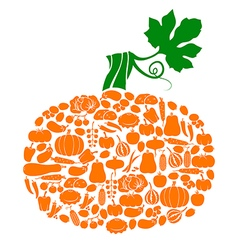 pumpkin on vegetables vector image