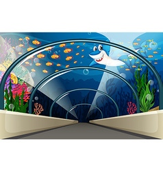 Public Aquarium with fish and coral reef vector image vector image
