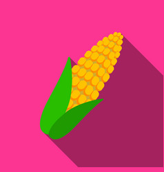 Corn icon flate singe vegetables icon from the vector