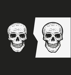 human skull sketch hand drawn vector image