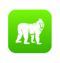 Mandrill monkey icon digital green vector