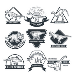 monochrome grunge labels set with different vector image