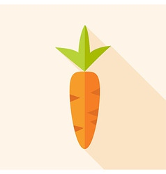 Natural carrot vector