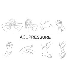 point massage body parts vector image vector image